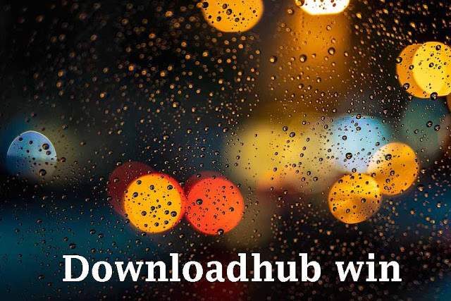Downloadhub Win 2020