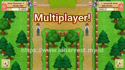 Cara Bermain Co-op Multiplayer HM: LoH