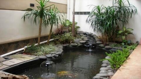 tips untuk bisa membuat kolam hias depan rumah menjadi