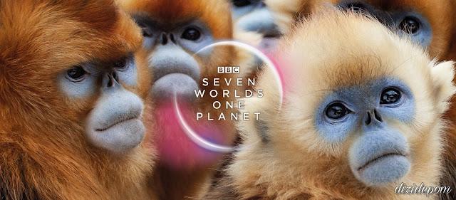 Seven Worlds, One Planet Belgeseli İndir