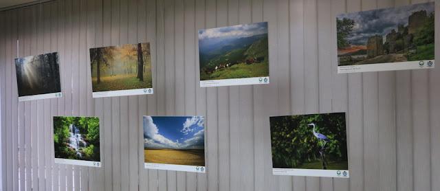 "Svečano proglašenje pobednika i otvaranje izložbe ""Viki voli zemlju"" - fotografije"