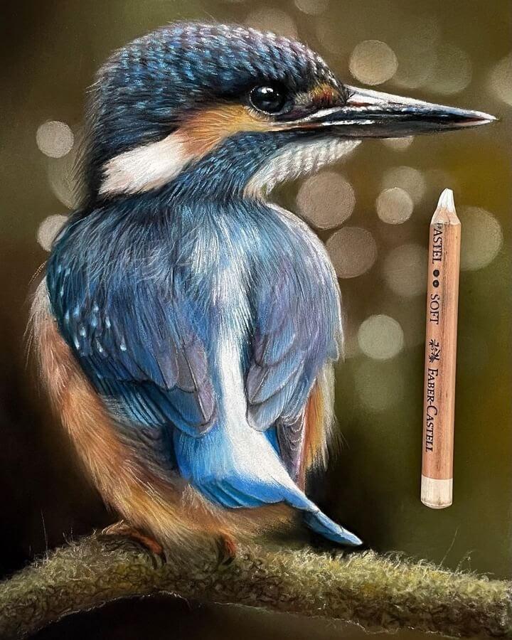 01-Kingfisher-Paul-Miller-www-designstack-co