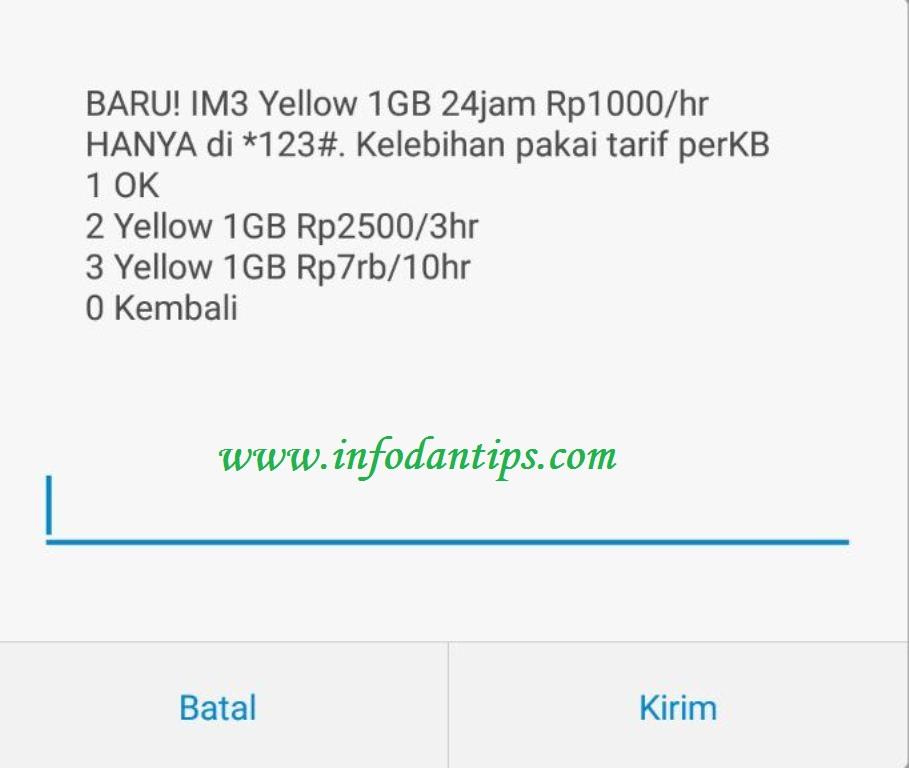 Cara Daftar Mengaktifkan Paket Yellow Indosat Im3 Ooredoo