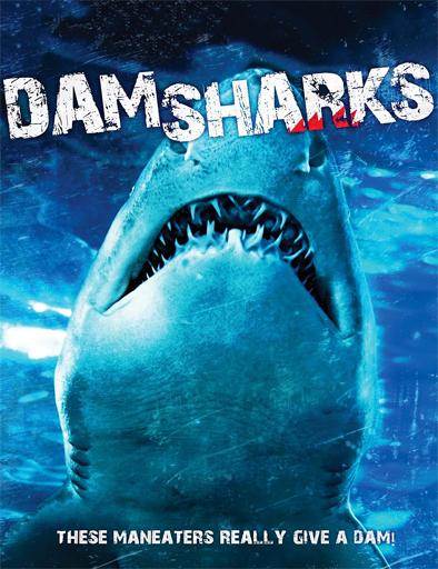 Ver Dam Sharks (2016) Online