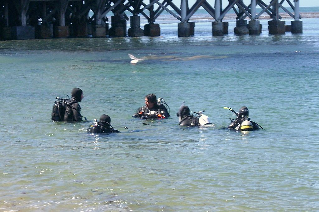 подводным плаванием с аквалангом в парке Джулии Пфайффер Бернс