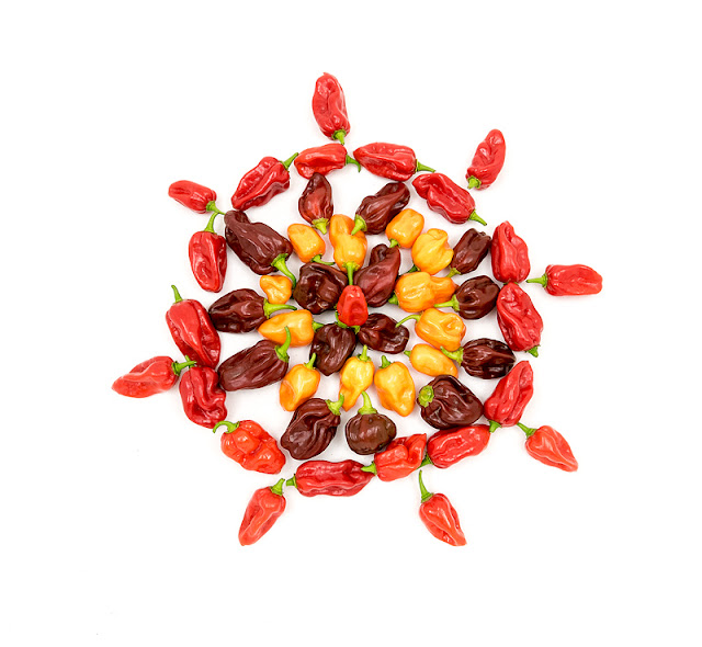 Red, orange and chocolate habanero mandala