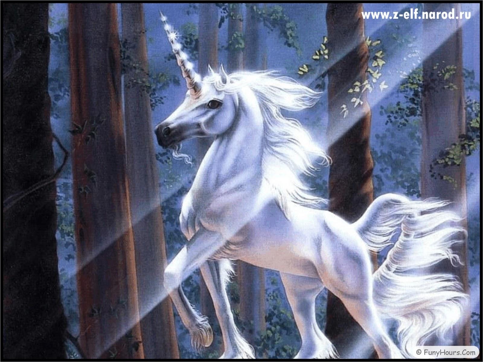 Unicorn-Pegasus wallpapers | Your Title