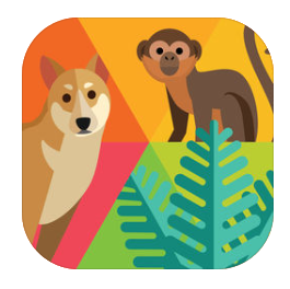 App para descubrir cosas sobre animales