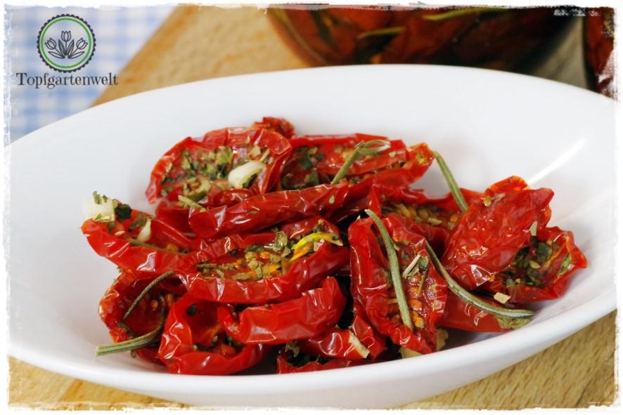 antipasti halbgetrocknete in l eingelegte tomaten einkochen einrexen oder einwecken. Black Bedroom Furniture Sets. Home Design Ideas