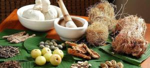 Cara-Tradisional-Menurunkan-Berat-Badan