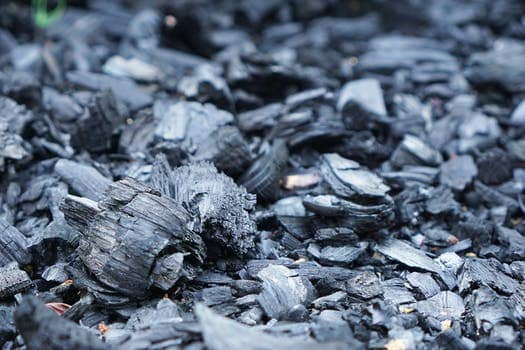 Everything You Should Know About Activated Charcoal 2019