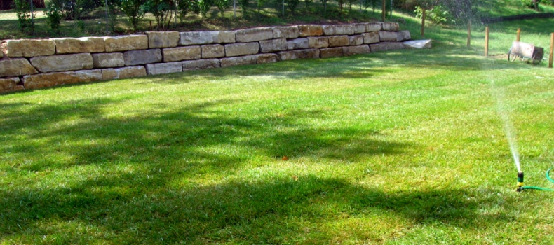 Best Lawn Care In Boise Idaho Pros And Cons Of Sod Seed
