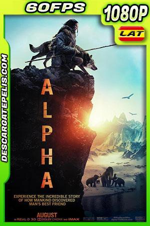 Alpha (2018) 1080P 60 FPS Latino – Ingles