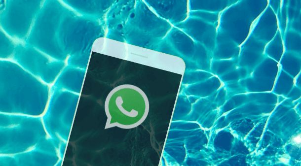 whatsapp profile saving