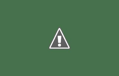 uterine artery embolization
