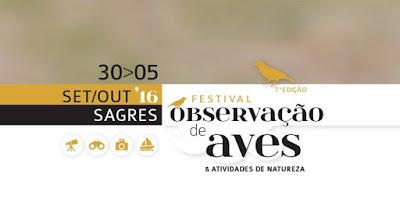 Festival de Observação de Aves, Sagres - 7ª Edição