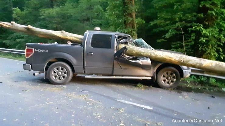 Accidente camioneta atravesada con árbol