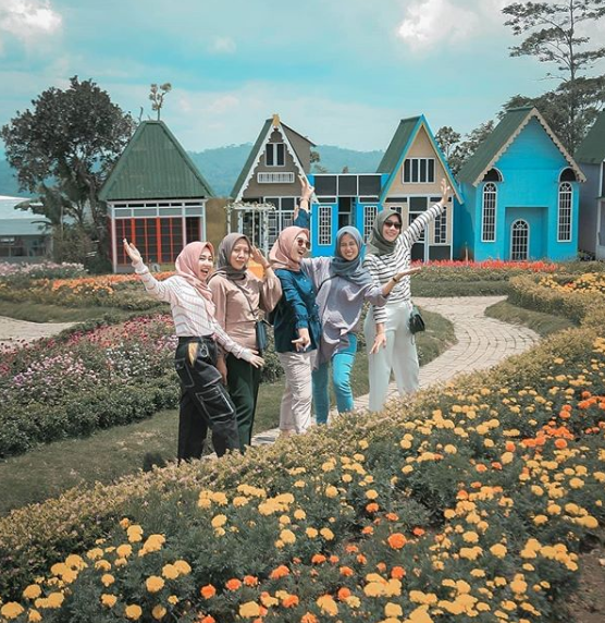 Jam Buka Taman Bunga Celosia Bandungan
