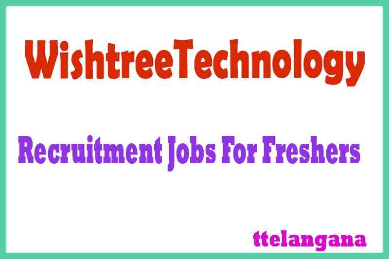 WishtreeTechnology Recruitment  Jobs For Freshers Apply