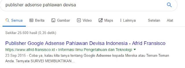Publisher Adsense Pahlawan Devisa ? Masa Sih!