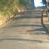 Prefeitura promove reparos em vias públicas pela cidade