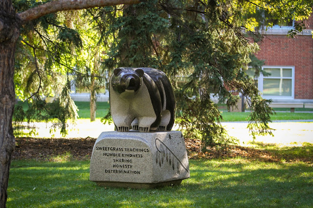 The Sweetgrass Bear at U of A