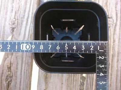 9センチ角