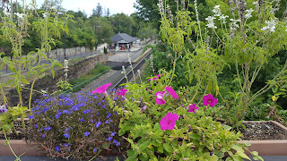 a view of the train station from the railroad bridge through the nice flowers out there by the Franklin Downtown Partnership