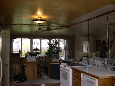 How Much To Fix Damp In Dining Room