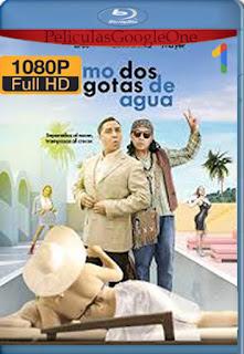 Como dos gotas de agua (2020)  [1080p Web-Dl] [Latino-Inglés] [LaPipiotaHD]