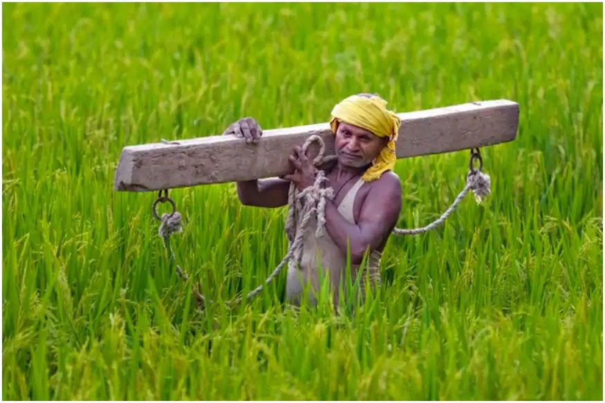 Indian Farmer conflict