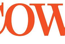 شركة cowi كوى وظائف شاغرة