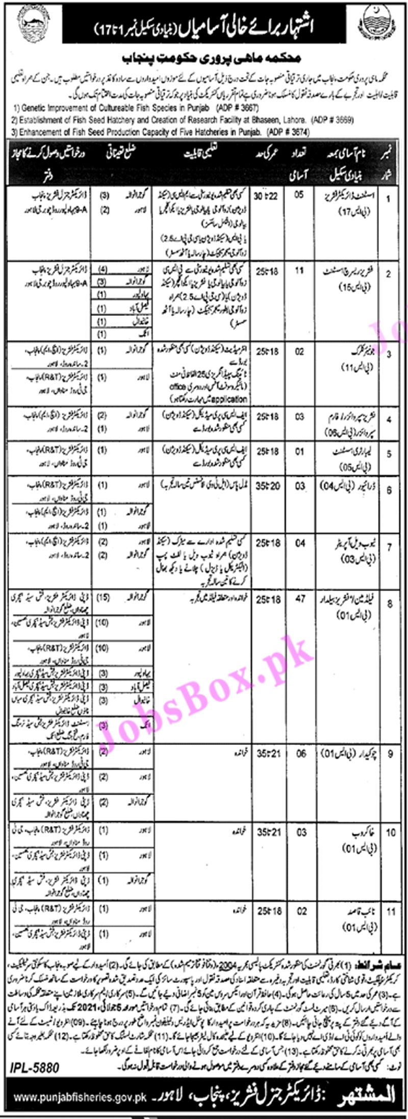Government Jobs in Fisheries Department Punjab 2021 Latest Vacancies - Fisheries Department Punjab Jobs Advertisement