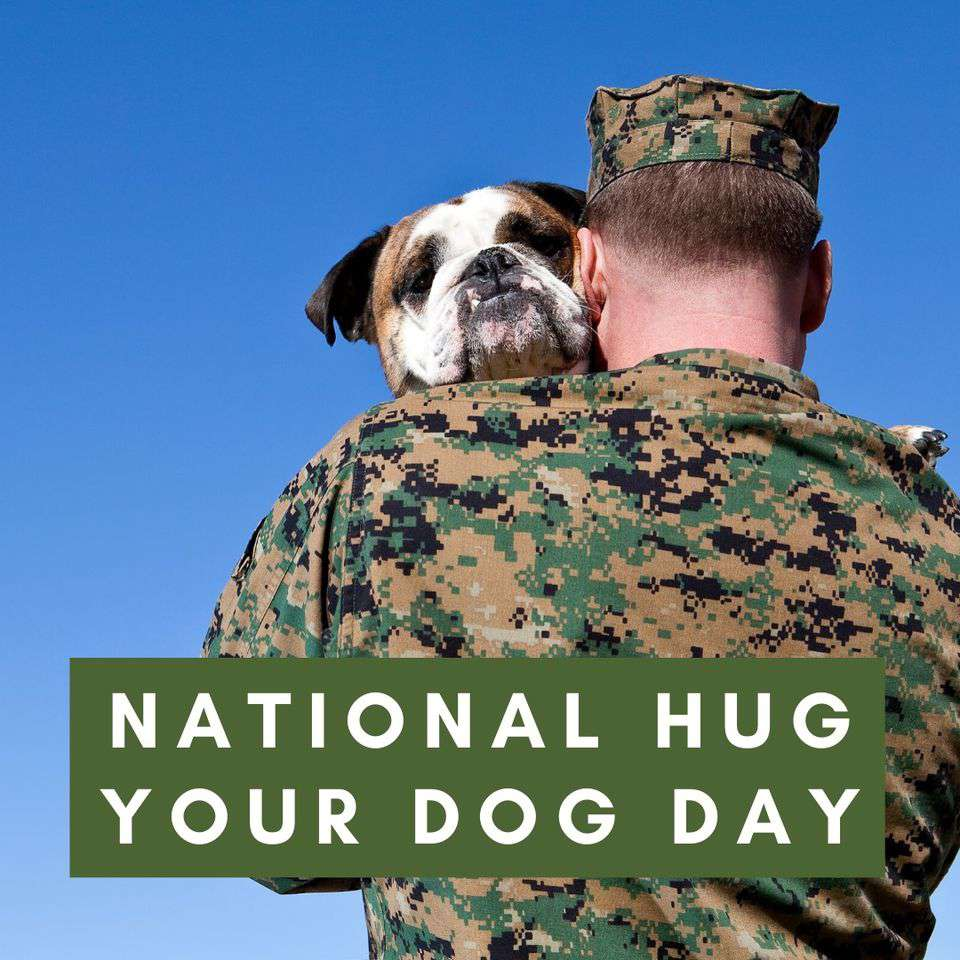 National Hug Your Dog Day Wishes Beautiful Image