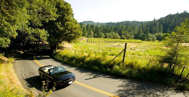 Serviço de aluguel de carro em Napa Valley