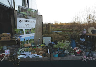 Our table at the Whitmuir Christmas Fair