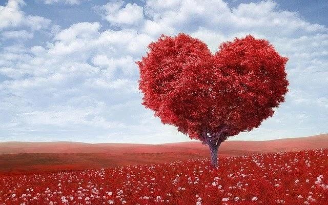 145+ Best Latest Sad Love Status Shayari in Punjabi 2020