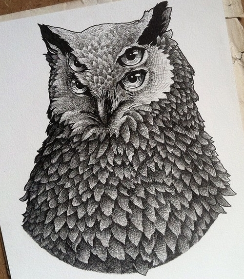 07-Owl-Muthahari-Insani-Beautifully-Detailed-Ink-Drawings-and-Doodles-www-designstack-co
