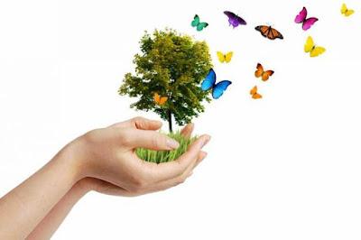Kumpulan Puisi Keindahan Alam dan Lingkungan Terbaru Kumpulan Puisi Keindahan Alam dan Lingkungan Terbaru