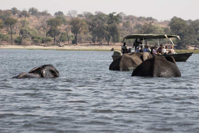 15 Amazing facts about Botswana in Hindi - बोत्सवाना देश के बारे में 15 रोचक तथ्य