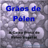 Grãos de Pólen - A Caixa Preta do Reino Vegetal - Tem o projeto da planta e é muito resistente.