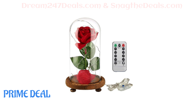 50% OFF Rose and LED Lights---Mother's Day Gift