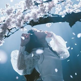 春 は ゆく aimer 歌詞