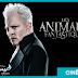 """Warner Bros se sépare de Johnny Depp pour les prochains volets des """"Animaux Fantastiques"""" !"""