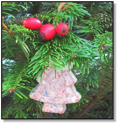 ein Weihnachtsbaum für die Vögel