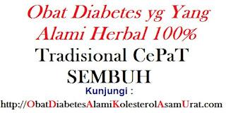 Obat diabetes yg yang alami herbal 100% tradisional CePaT SEMBUH