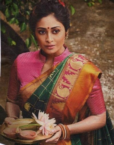 High Neck with Mandarin Collar saree blouse