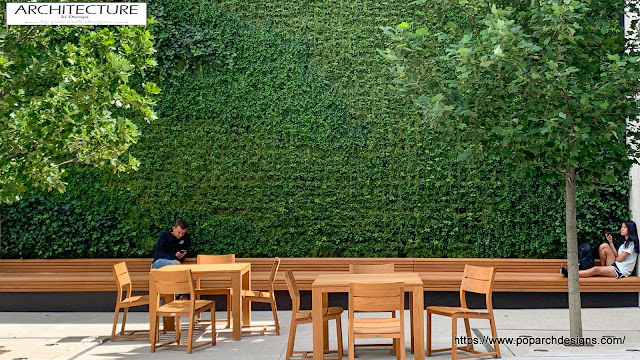 Green wall - living wall facade