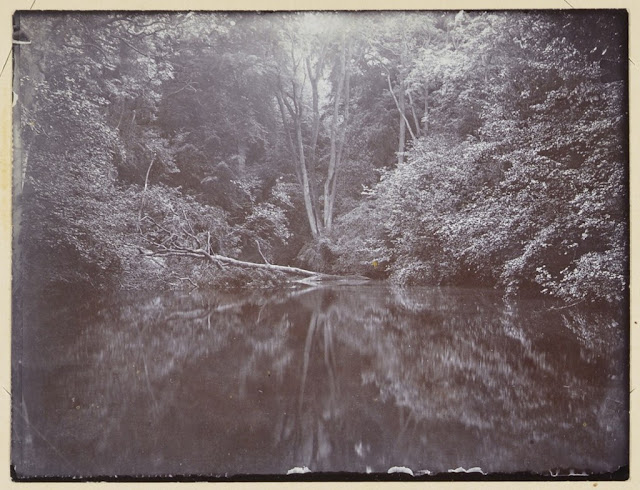 Image of the serene looking Silent Pool, surrounded by trees, taken in 1916