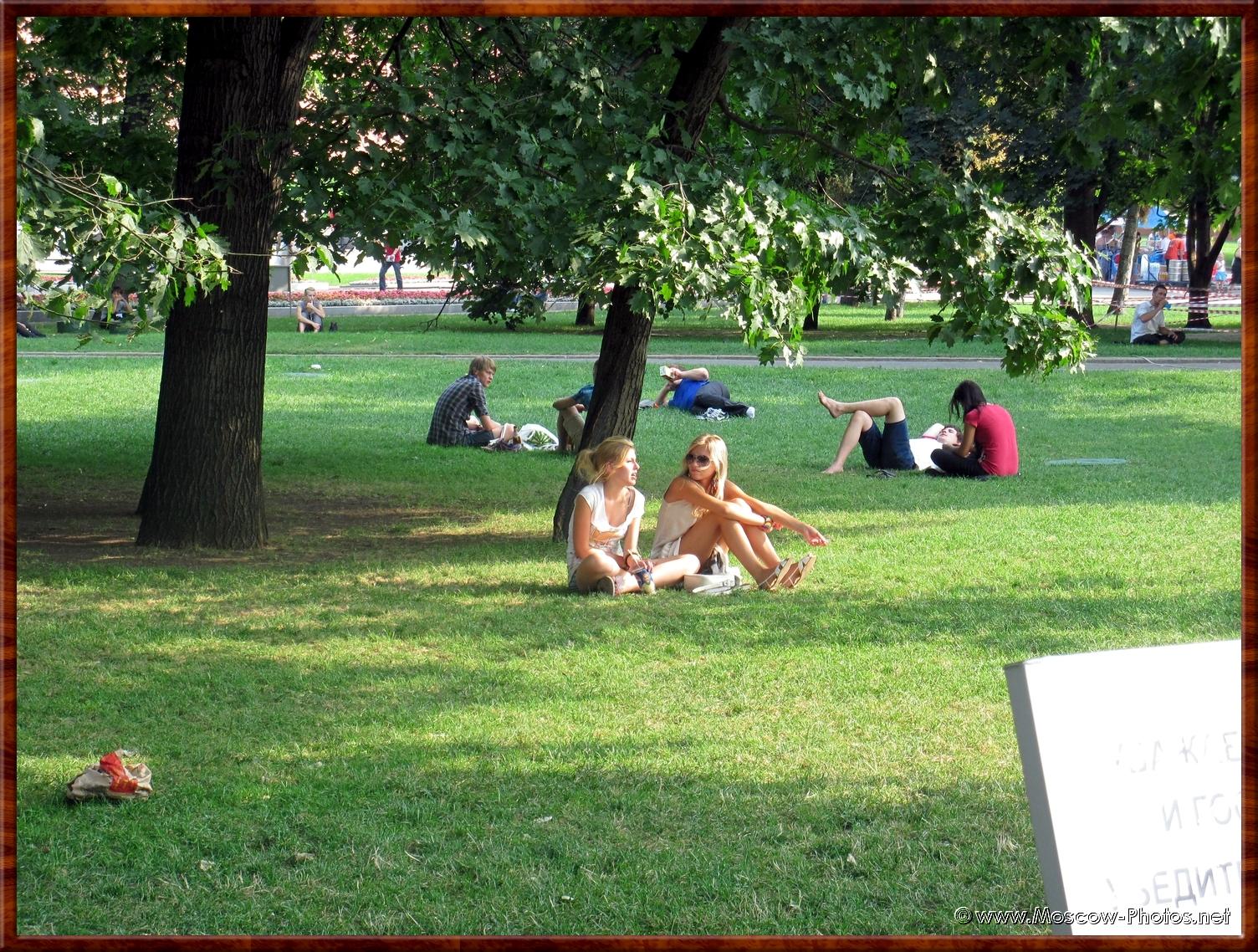 Cozy lawn in Alexander Park